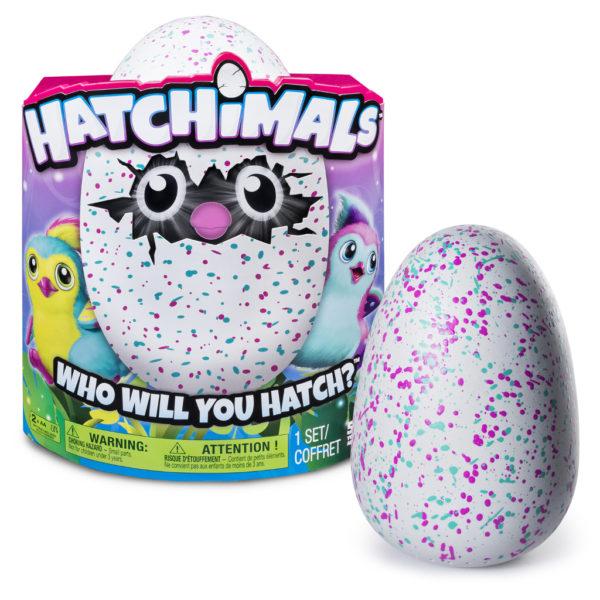 Хетчималс яйца