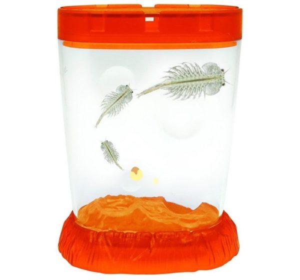 sea monkeys аквариум светящийся купить